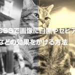 CSSで画像に白黒やセピアなどの効果をかける方法